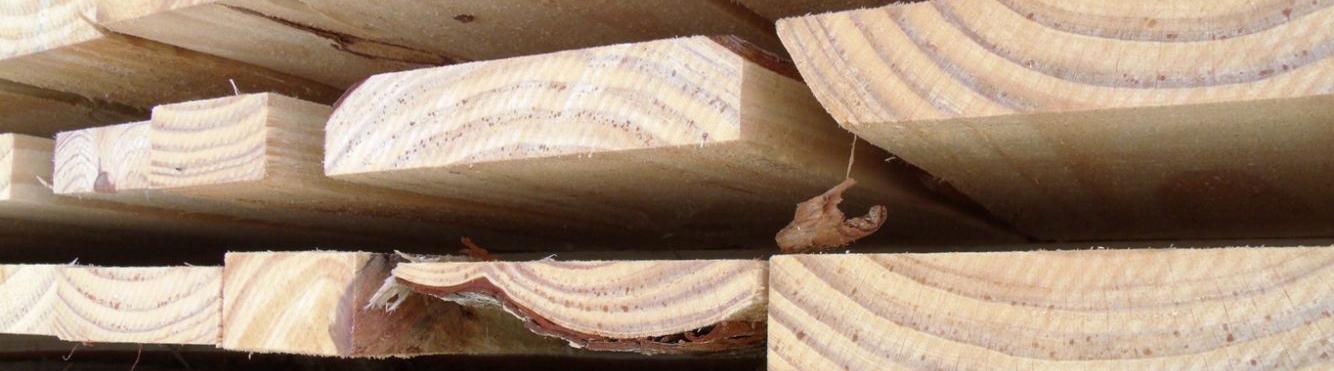 Ano de 2018: Recuperação da indústria madeireira